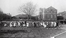 園芸 勧修寺經雄教授。圃場は現在のデントン館の位置。背後の建物は大学図書館(現啓明館)(1930年)