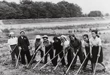 加茂川農園開墾 (1943年)